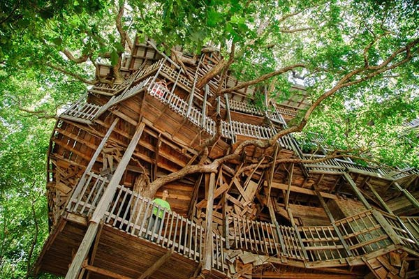 tree-houses-11