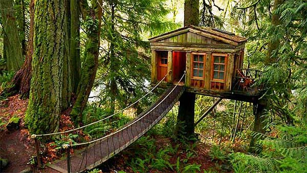 14 Amazing Tree Houses That Will Bring Out Your Inner Elf