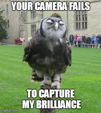 cameras-capture-brilliance