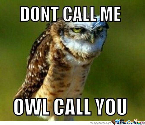 dont-call-me-owl-call-you