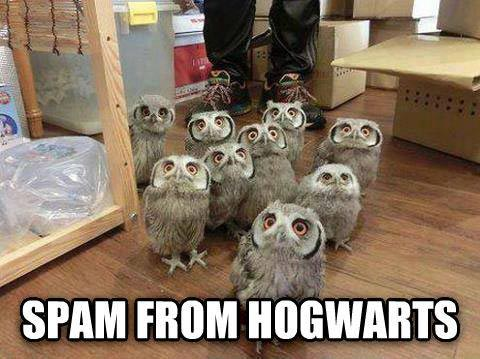 hogwarts-spam